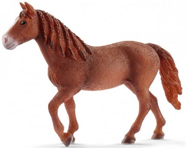 Konie Schleich 13870 Klacz rasy Morgan