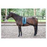 Pas elastyczny do lonżowania na zad - Harry's Horse
