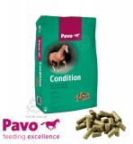 Pasza dla koni rekreacyjnych i w lekkim sporcie Condition 20kg - PAVO