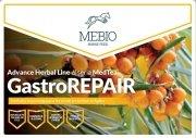 Advance Herbal Line MedTea GastroRepair 3 kg- St. Hippolyt