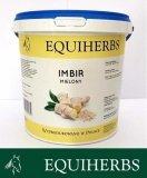 Imbir 1 kg - EQUIHERBS