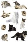 Naklejki z kotkami - Herma
