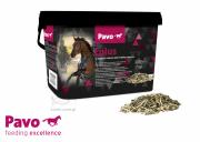 Suplement zwiększający wytrzymałość mięśni Eplus 3kg - PAVO