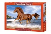 Puzzle HORSE ON THE BEACH 500 elementów - Castorland
