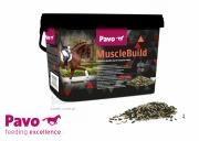 Suplement wpływający na szybki rozwój mięśni Muscle Build 3kg - PAVO