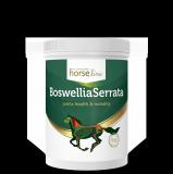 Boswellia Seratta 900g - HorseLine PRO