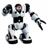 Robone RTR Robot zdalnie sterowany, programowanie ruchów