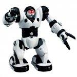 TPC: Robone RTR Robot zdalnie sterowany, programowanie ruchów