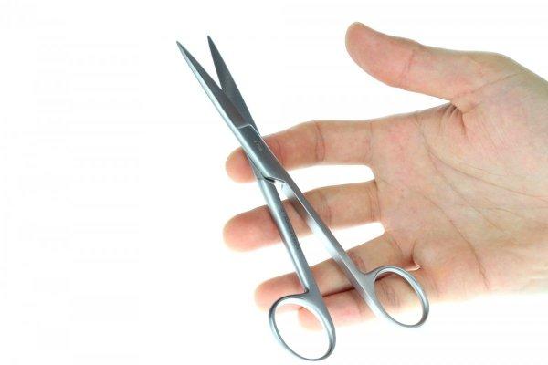 Nożyczki Akwarystyczne Proste 20 Cm Precyzyjne Jakość