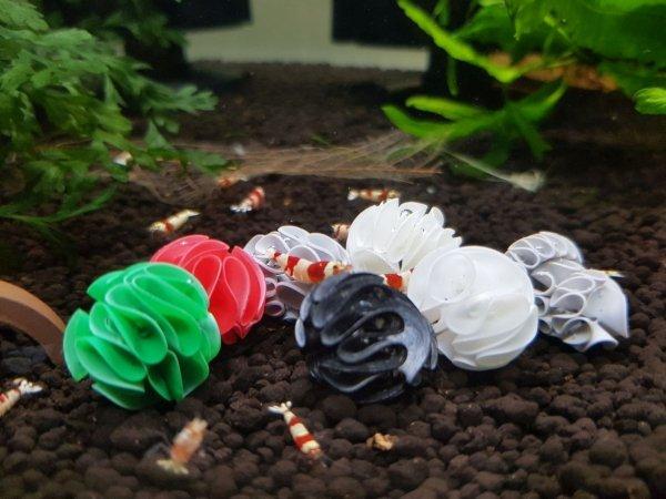 Baby Shrimp Shelters Zielony 20 szt