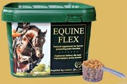 Green Horse EQUINE FLEX