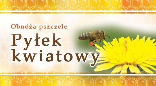 Paczka etykiet mini pyłek kwiat. 45x25 mm (100szt)
