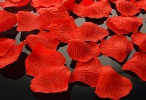 Płatki róż czerwone 100 szt PLRD100-007