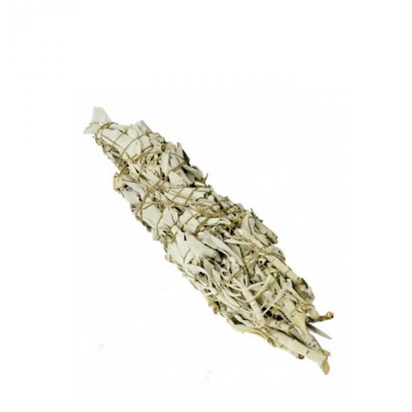 Biała szałwia - pęczek