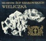 Alfons Długosz • Muzeum Żup krakowskich. Wieliczka