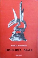 Michał Tymowski • Historia Mali