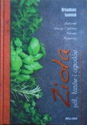 Arkadiusz Iwaniuk • Zioła pól, lasów i ogrodów
