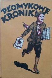 Maria Kochanowska • Płomykowe kroniki. Lata 1922-1939