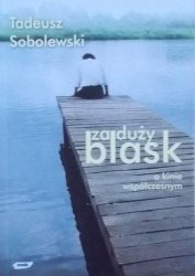 Tadeusz Sobolewski • Za duży blask: O kinie współczesnym