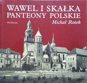 Michał Rożek • Wawel i Skałka. Panteony polskie