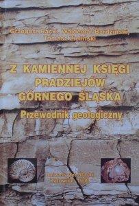 Grzegorz Racki, Waldemar Bardziński, Tomasz Zieliński • Z kamiennej księgi pradziejów Górnego Śląska. Przewodnik geologiczny