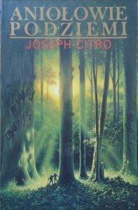 Joseph Citro • Aniołowie podziemi