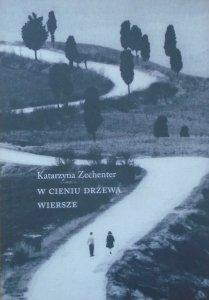 Katarzyna Zechenter • W cieniu drzewa. Wiersze