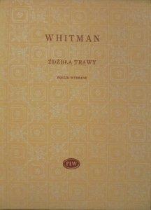 Walt Whitman • Źdźbła trawy [Biblioteka Poetów]
