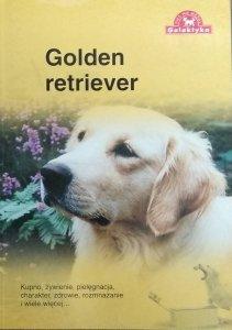 Over Dieren • Golden retriever