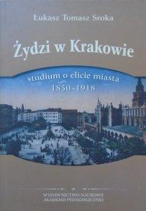 Łukasz Tomasz Sroka • Żydzi w Krakowie. Studium o elicie miasta 1850-1918