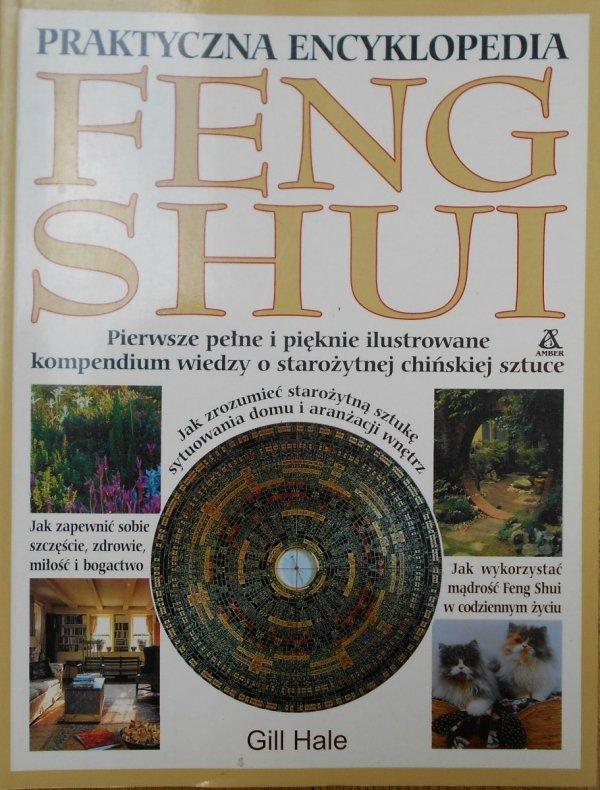 Gill Hale • Praktyczna encyklopedia Feng Shui