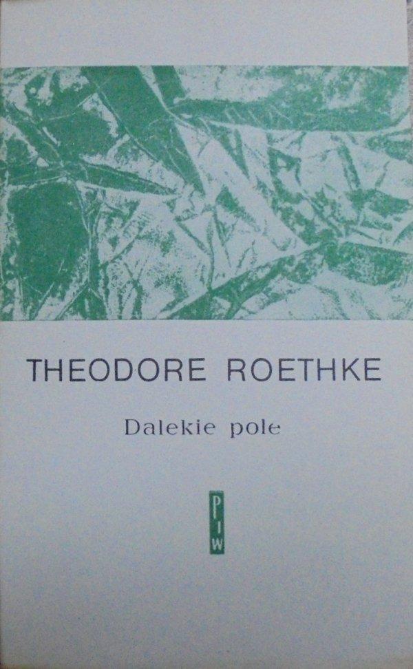 Theodore Roethke • Dalekie pole [Aleksander Stefanowski]