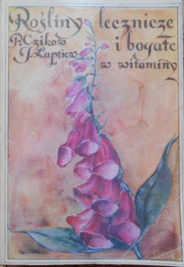 Czikow, Łaptiew • Rośliny lecznicze i bogate w witaminy