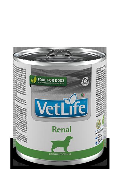 Farmina Vet Life Dog Renal 300g