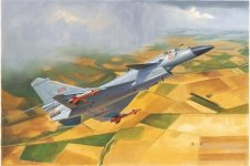 Trumpeter 01651 Chinese J-10B Fighter