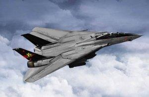 Trumpeter 03918 F-14B Tomcat 1/144