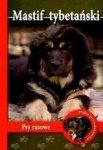 Mastif tybetański Psy Rasowe