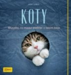 Koty Wszystko co musisz wiedzieć o swoim kocie