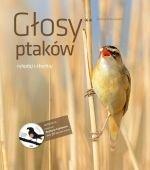 Głosy ptaków Tom 2 + CD