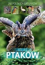 Atlas ptaków /SBM