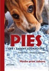 Pies Gry i zabawy edukacyjne
