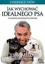Jak wychować idealnego psa W okresie szczenięcym i później