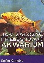 Jak założyć i pielęgnować akwarium