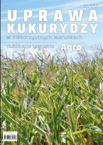 Uprawa kukurydzy w niekorzystnych warunkach