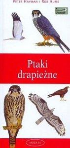 Ptaki drapieżne Przewodnik