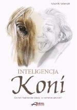 Inteligencja koni Co tak naprawdę siedzi w końskiej głowie?