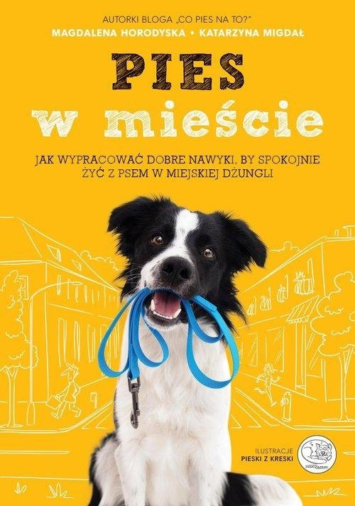 Pies w mieście Jak wypracować dobre nawyki, by spokojnie żyć z psem w miejskiej dżungli