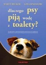 Dlaczego psy piją wodę z toalety?
