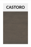 TI003 castoro