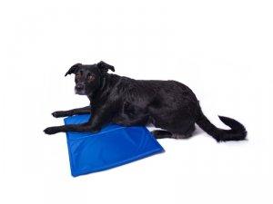 Mata chłodząca dla zwierząt niebieska 40x50cm